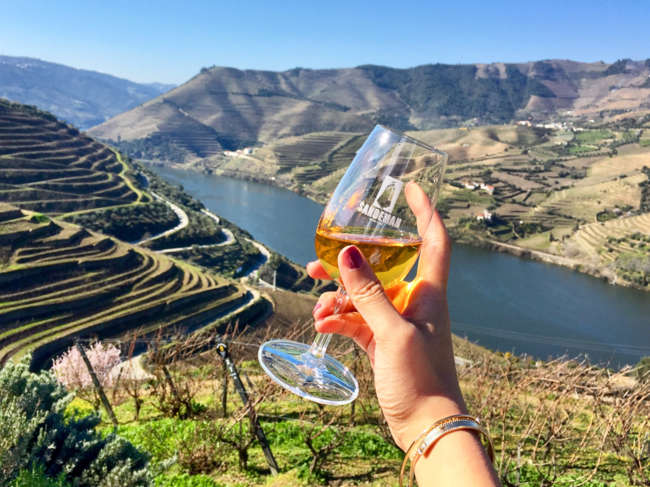 Portugal Douro valley wine tasting